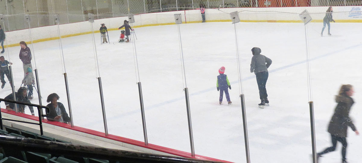 Southfield Sports Arena Ice Rink
