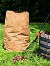 Paper bag filled with leaves sits next to a rake leaning on a bucket