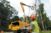Picture of a machine cutting down a tree