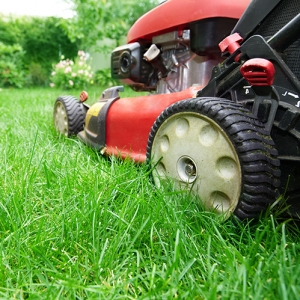 COVID-19 Lawn Maintenance Guidelines